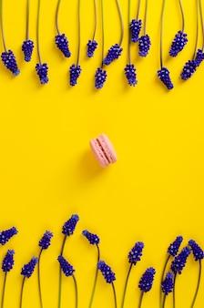 Escoja los macarrones rosados y las flores azules del muscari en fondo amarillo. tiro de arriba. lay flat. composición de marco vertical