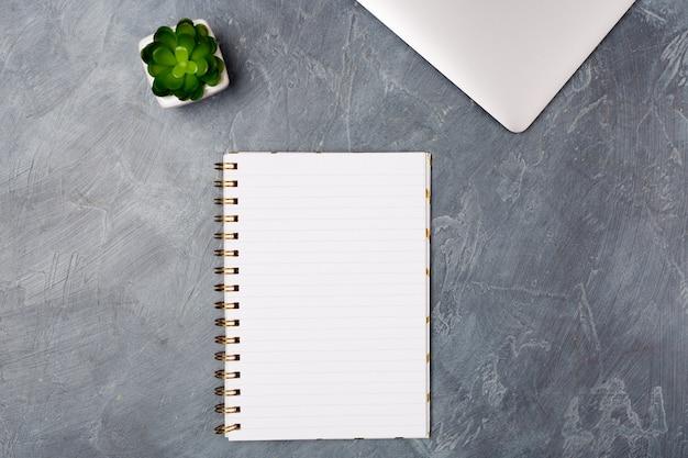 Escritorio gris con laptop plateada, lista de papel en blanco y planta