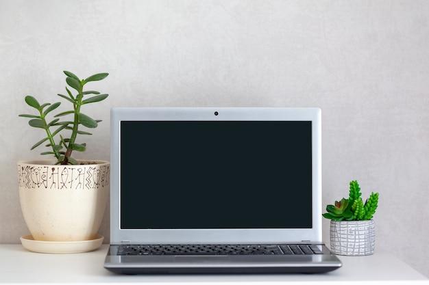 Escritorio independiente en el lugar de trabajo con computadora portátil abierta y plantas de interior en la mesa.
