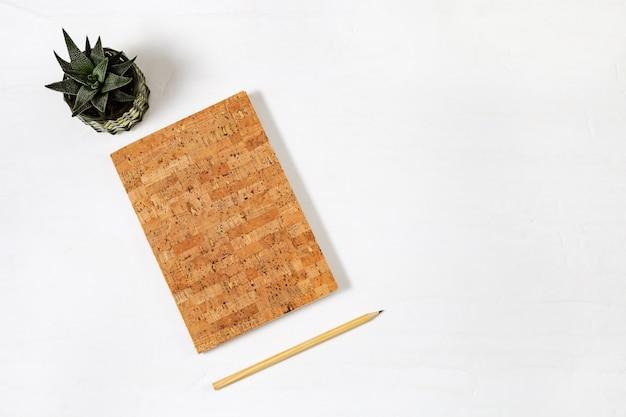 Escritorio de oficina con cuadernos simulados, planta suculenta, lápiz