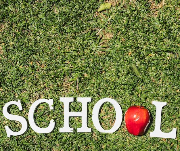 Escuela de palabra blanca sobre hierba