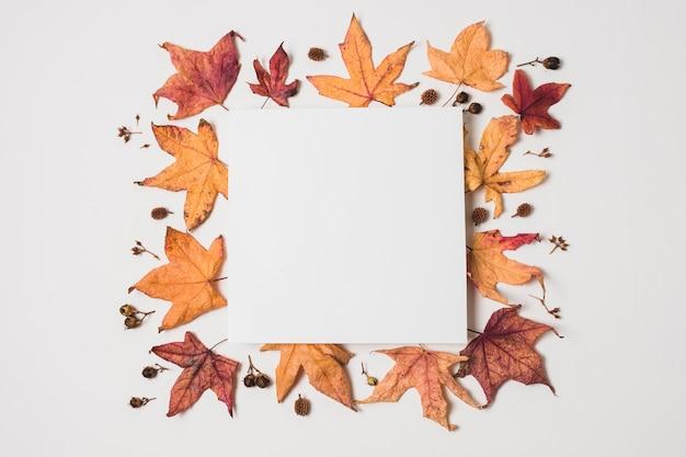 Espacio en blanco de la copia con el marco de las hojas de otoño