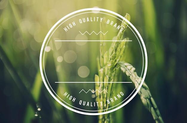 Espacio de copia de banner de insignia de marca de alta calidad