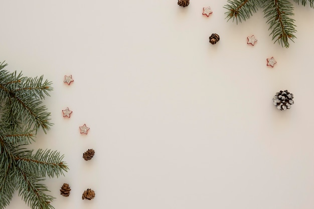 Espacio de copia en blanco de agujas de pino natural vista superior