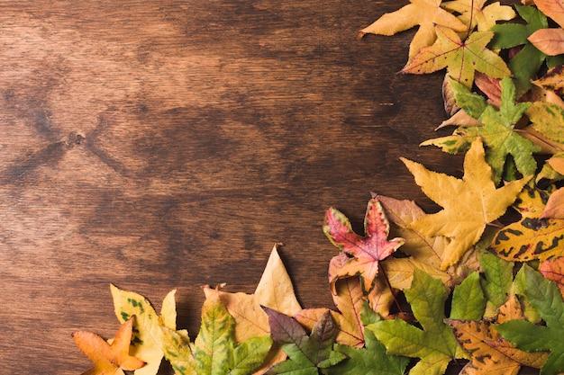 Espacio de copia de hojas planas de otoño