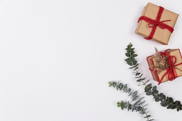 Espacio de trabajo con caja de regalo y eucalipto sobre fondo blanco