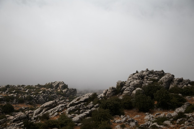 España, málaga, antequera, torcal de antequera: rocas paisaje con fondo de niebla