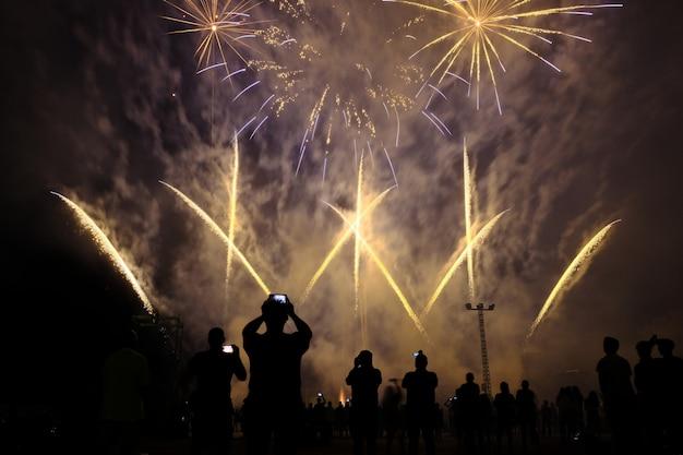 Espectáculo de fuegos artificiales en la noche
