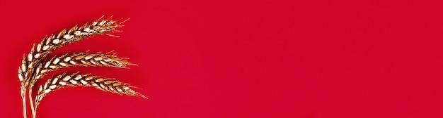 Espigas de trigo pintadas con pintura dorada sobre un fondo rojo. giro superior. copia espacio trigo dorado