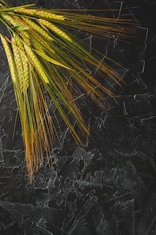 Espigas de trigo verde inmaduro
