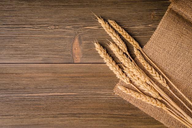 Las espigas de trigo yacen sobre el saco de arpillera de arpillera. fondo, textura