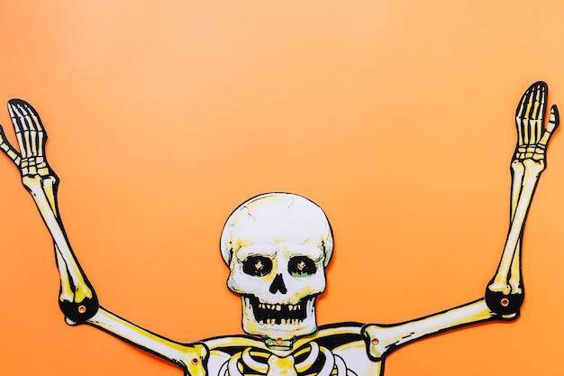 Esqueleto de cartón de halloween
