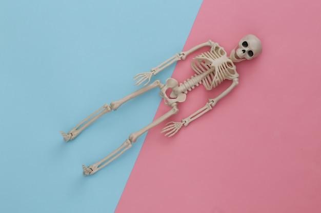 Esqueleto falso en pastel azul rosa. decoración de halloween, tema de miedo