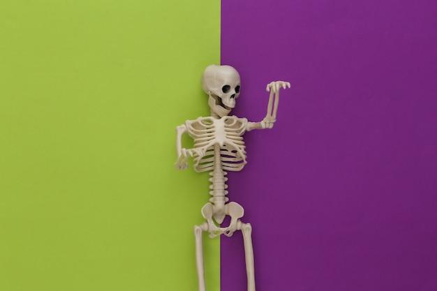 Esqueleto sobre papel verde violeta. decoración de halloween, tema de miedo