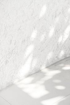 Esquina blanca vacía con sombra de hojas tropicales
