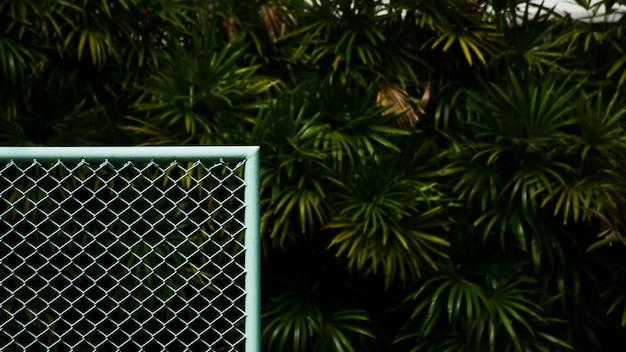 Esquina de jaula azul con malla metálica delantera de la palmera.