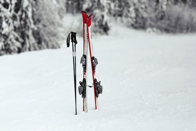 Esquís rojos y blancos ponen en la nieve en el bosque