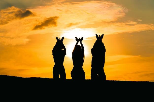 Están haciendo símbolos de palomas sobre la libertad y la naturaleza sobre un fondo de puesta de sol. concepto de esperanza