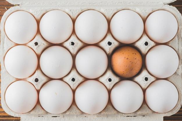 Estantería con huevos blancos y marrones