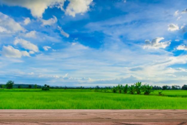 Estantes de productos y hermosas vistas.
