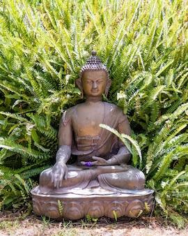 Estatua de buda colocada en el suelo, un amplio helecho que crece detrás de la figura.