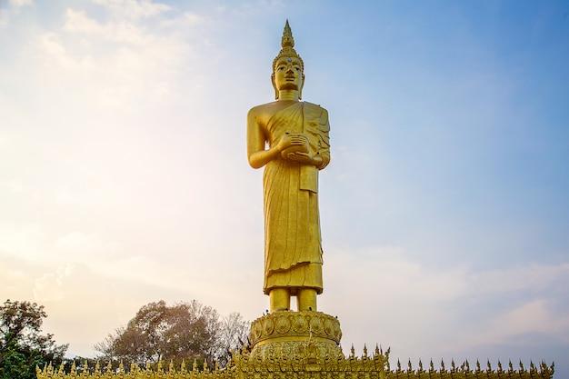 Estatua dorada gigante de buda con cuenco de limosnas y la paloma en la estatua de buda en tailandia