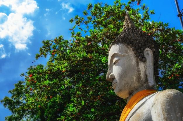 Estatuas de buda alineadas en wat yai chaimongkol ayutthaya, bangkok, tailandia