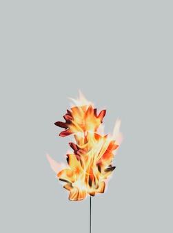 Estética flor de rosa ardiente, efecto de llama realista sobre fondo oscuro
