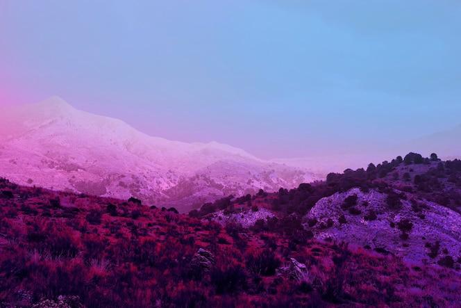 Estético paisaje retro vaporwave