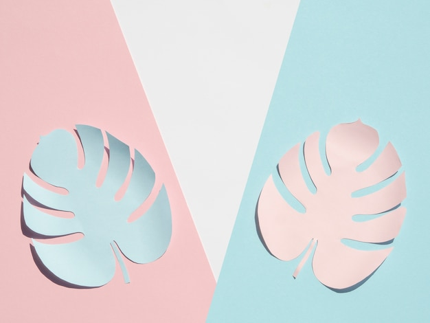 Estilo de corte de papel de hojas de monstera con tonos rosados y azules