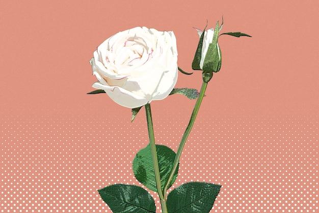 Estilo pop art de papel tapiz de rosa blanca