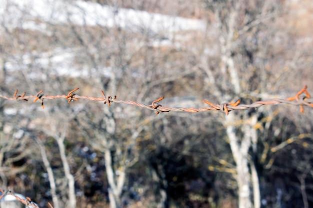 Estilo vintage. cerca de alambre de púas en la pared de ladrillo viejo borrosa. día internacional de conmemoración en memoria de las víctimas del holocausto, concepto de amnistía.