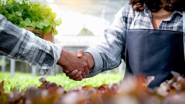 Se estrechan las manos después de que el agricultor coseche ensalada orgánica vegetal, lechuga de la granja hidropónica a los clientes.
