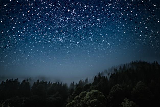 La estrella indica la navidad de jesucristo.