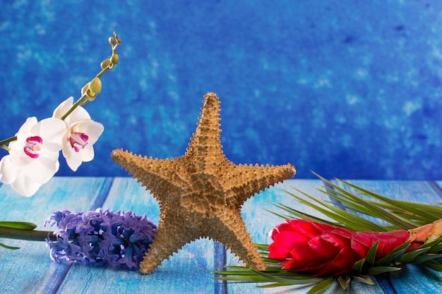 Estrella de mar con flor de jacinto y orquídea blanca en madera azul