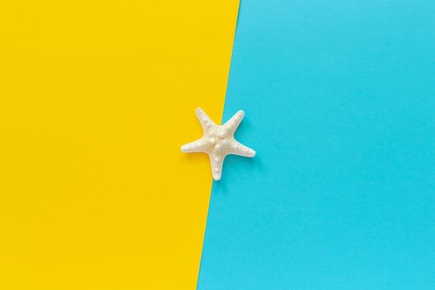 Una estrella de mar en el fondo de papel azul y amarillo