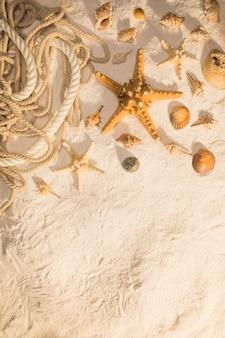 Estrellas de mar conchas y cuerdas de gasterópodo sobre arena.