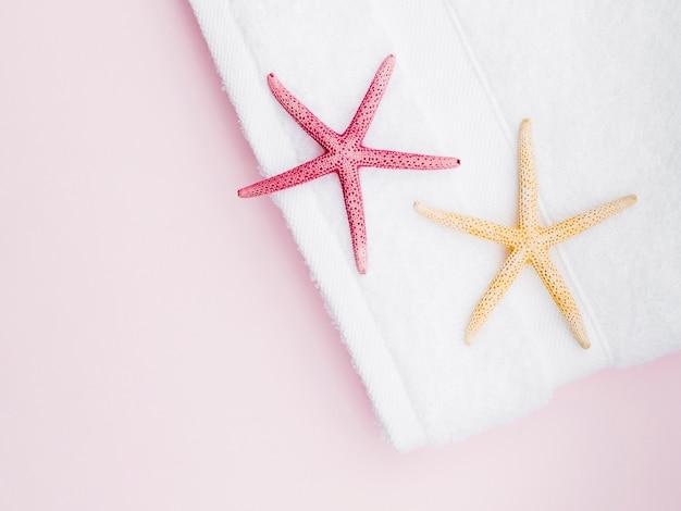 Estrellas de mar planas sobre la toalla