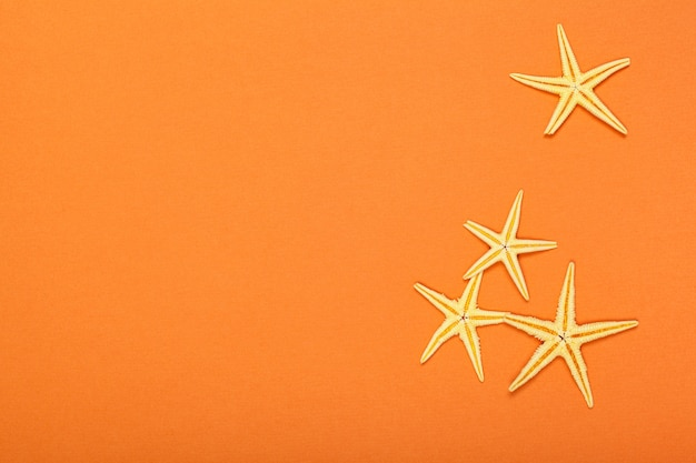 Estrellas de mar sobre un fondo vibrante colorido brillante