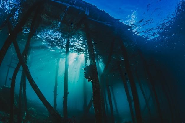 Estructura portuaria bajo el agua