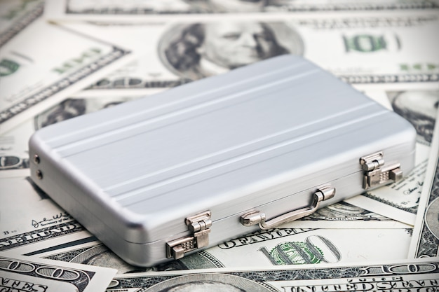 Estuche pequeño de aluminio para el dólar.