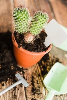 Etiqueta en blanco dentro de la planta en maceta de cactus en mesa de madera