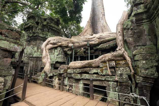 Excursión de un día a camboya