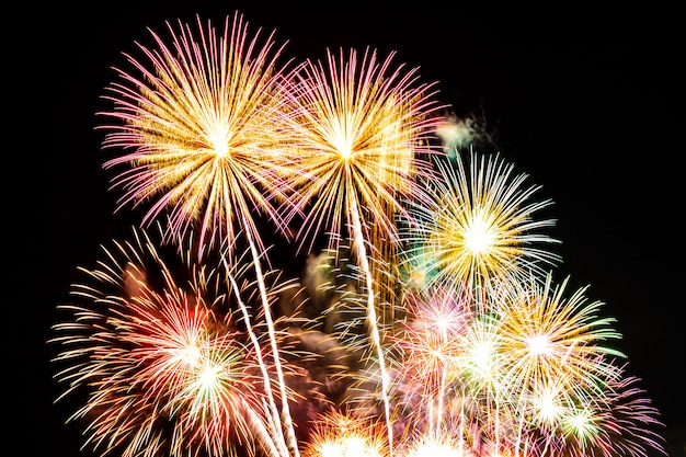 Exhibición hermosa del fuego artificial en el cielo en la noche para la celebración