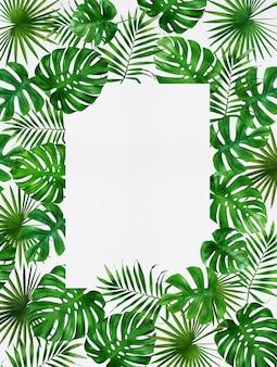 Exóticas plantas tropicales selva verde brillante palma monstera deja marco de borde