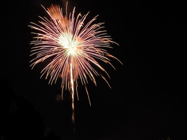 Una explosión de fuegos artificiales sobre el cielo oscuro.