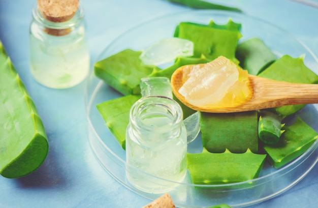 Extracto de aloe vera en una pequeña botella y piezas sobre la mesa. enfoque selectivo