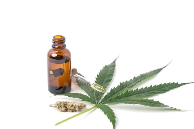 Extractos de aceite de cannabis en frascos y hojas de cannabis verde, marihuana aislado sobre fondo blanco. cultivo de marihuana medicinal y de hierbas.
