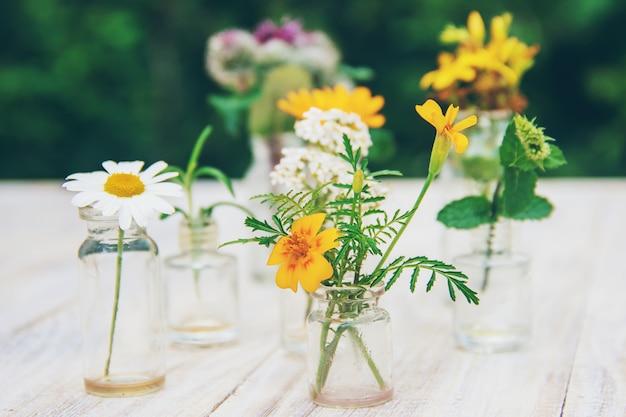 Extractos de hierbas en pequeñas botellas. enfoque selectivo