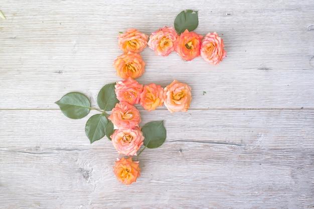 F, alfabeto de flores rosas aisladas sobre fondo de madera gris, plano lay